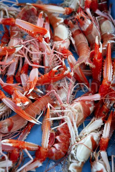 Foto stock: Mediterráneo · rojo · blanco · agua · mar · fondo