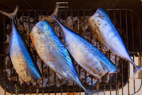 tuna fish barbecue with bonito sarda and little tunny Stock photo © lunamarina