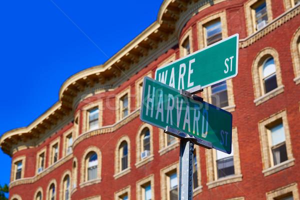 улице Кембридж Массачусетс США свет знак Сток-фото © lunamarina