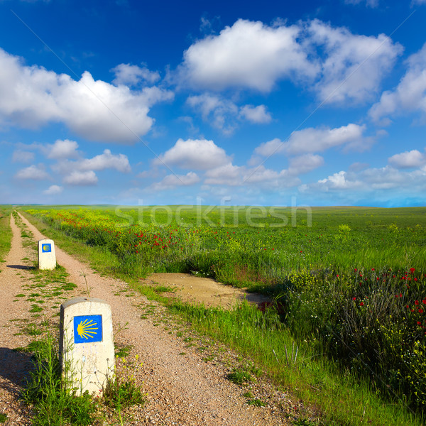 Way of saint James with shell sign fields Palencia Stock photo © lunamarina