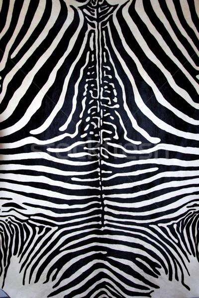Animal zebra pele preto e branco pele Foto stock © lunamarina