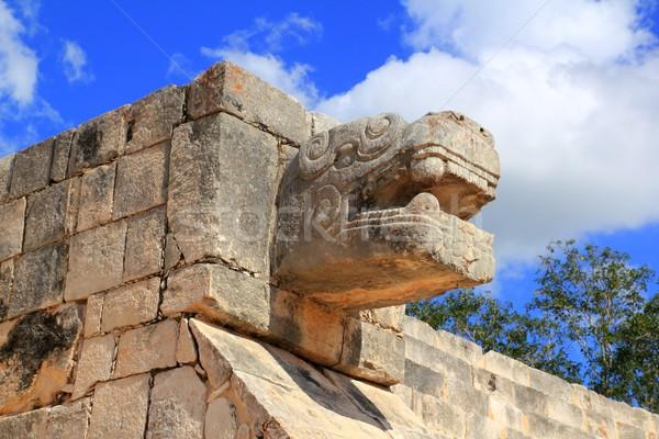 Chichen Itza węża ruiny Meksyk wąż budynku Zdjęcia stock © lunamarina
