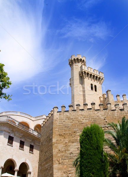 Almudaina palace in Palma de Mallorca from Majorca Stock photo © lunamarina