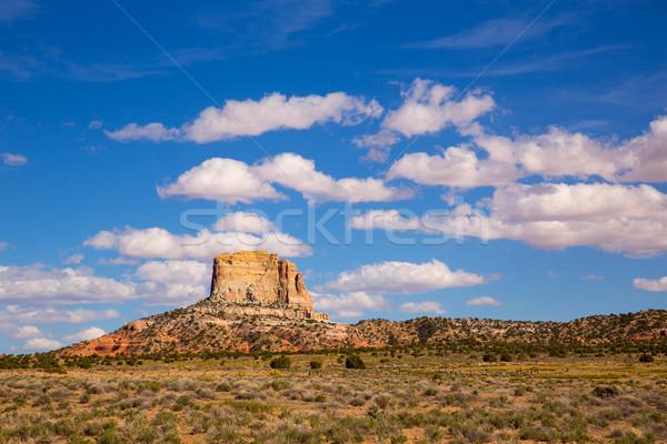 アリゾナ州 砂漠 ランダム 広場 米国 ストックフォト © lunamarina