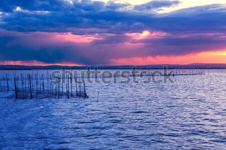 закат озеро парка Валенсия Испания красочный Сток-фото © lunamarina