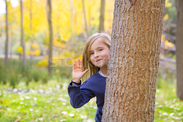 Autumn forest with child girl greeting hand in tree trunk Stock photo © lunamarina