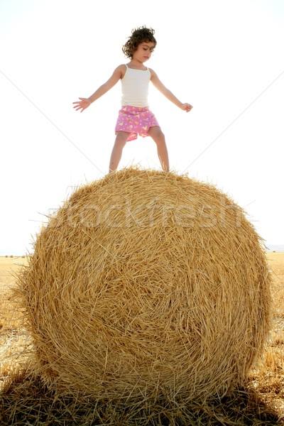 девушки играет пшеницы сушат тюк Открытый Сток-фото © lunamarina