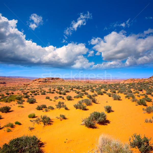 Arizona sivatag Colorado folyó USA narancs Stock fotó © lunamarina