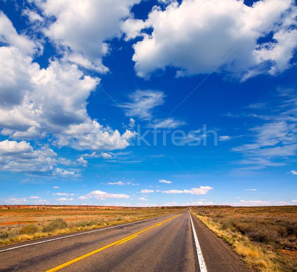 Arizona desert on US 89 in a sunny day Stock photo © lunamarina