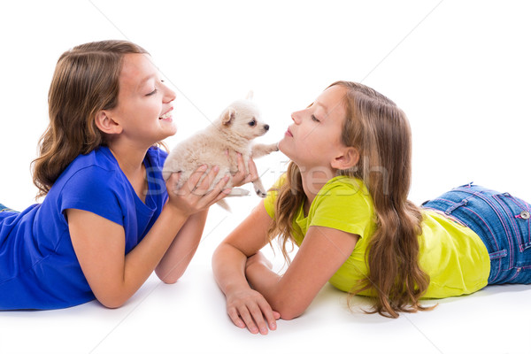 happy twin sister kid girls and puppy dog lying Stock photo © lunamarina