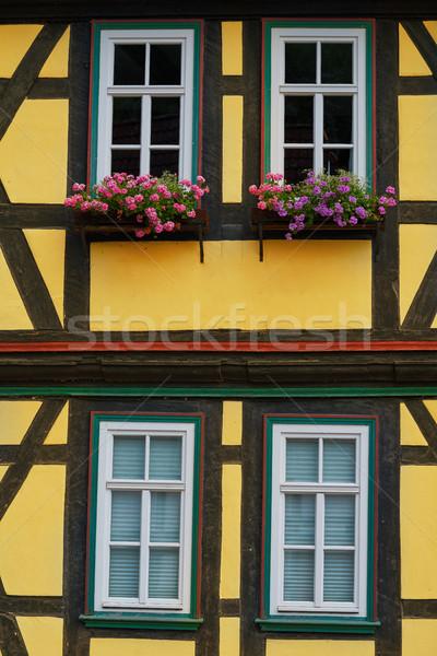 Góry Niemcy budynku podróży Europie piękna Zdjęcia stock © lunamarina