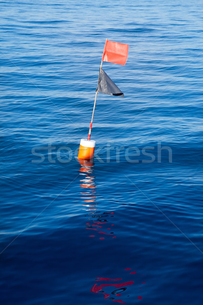 Longliner and trammel net buoy with flag pole Stock photo © lunamarina