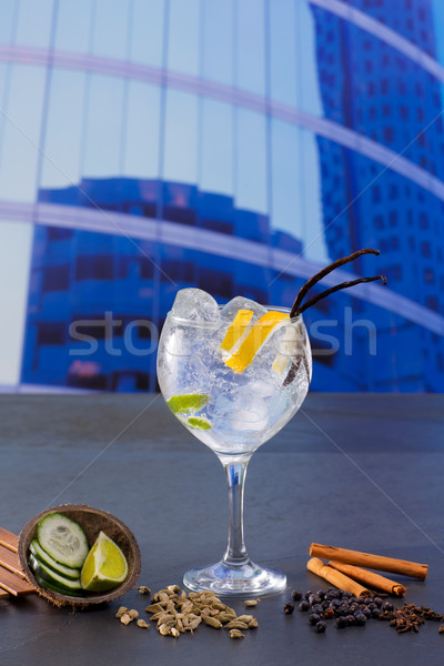 Gin tonic cocktail with spices in urban city buildings Stock photo © lunamarina