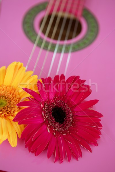 Foto stock: Hippie · flor · amarelo · rosa · guitarra · flower · power