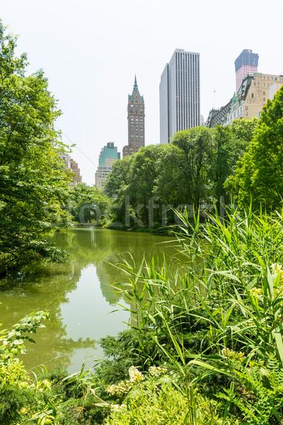 Central Park vijver Manhattan New York hemel stad Stockfoto © lunamarina