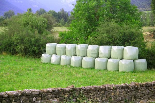 cereal bales round green plastic wrap cover Stock photo © lunamarina
