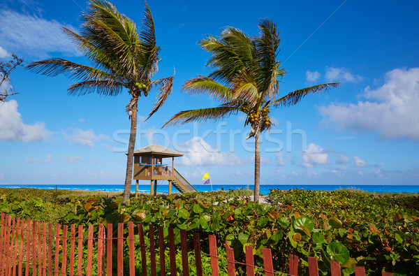 Strand Florida USA water achtergrond zomer Stockfoto © lunamarina