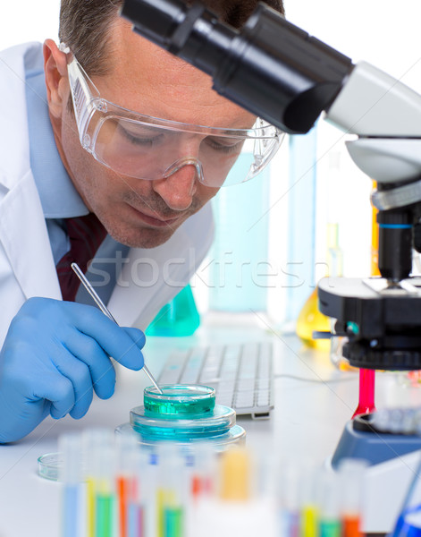 laboratory scientist working at lab with test tubes Stock photo © lunamarina