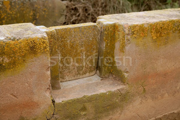 Irrigation ditch canal for agriculture Stock photo © lunamarina