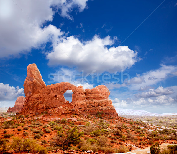Arches National Park Turret Arch in Utah USA Stock photo © lunamarina