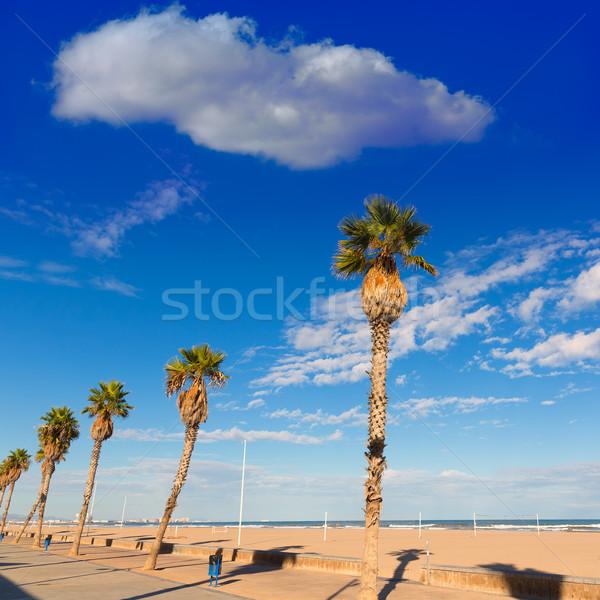 Valencia tengerpart pálmafák víz felhők nap Stock fotó © lunamarina