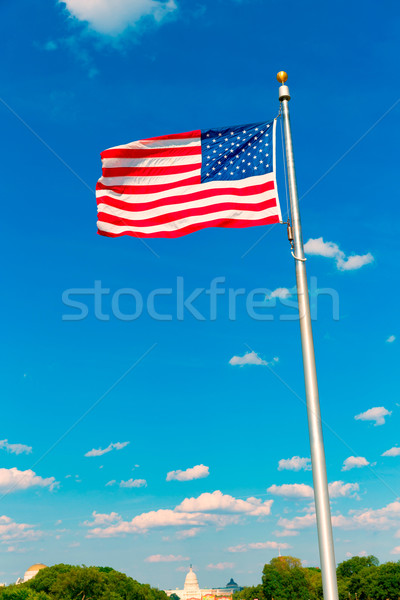 Washington Monument flag and Capitol in DC USA Stock photo © lunamarina
