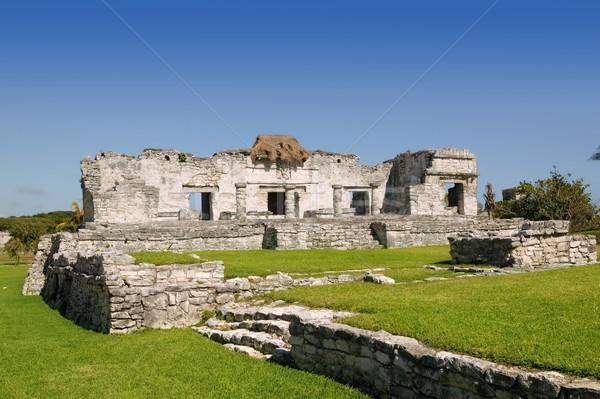 Stockfoto: Ruines · Mexico · monumenten · stad · muur · groene