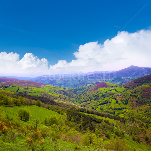 O Cebreiro mountains by the way of Saint James Stock photo © lunamarina