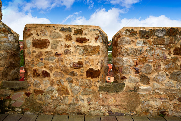 крепость стены Испания способом замок Сток-фото © lunamarina