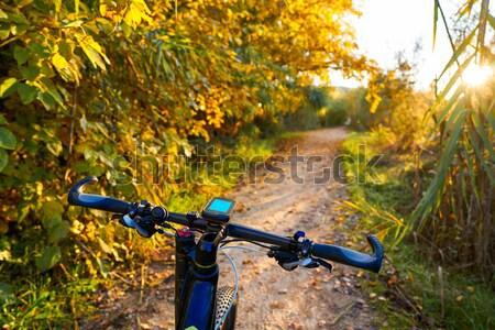 Bicikli Valencia park naplemente víz fa Stock fotó © lunamarina