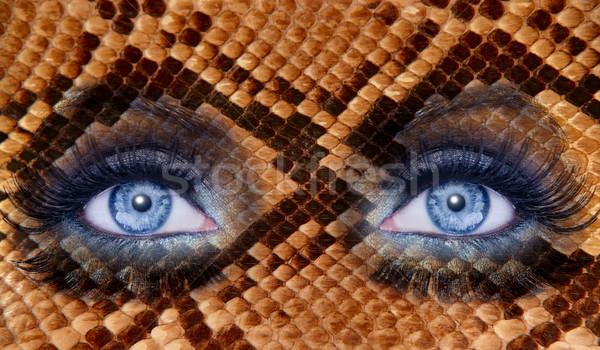 синий моде макияж глазах Leopard Jaguar Сток-фото © lunamarina