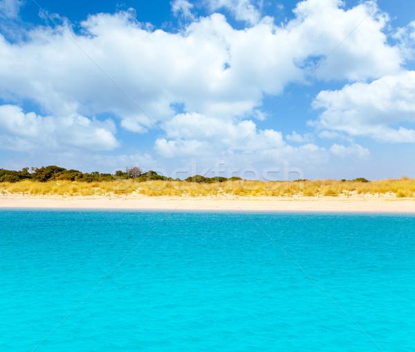 Espalmador in Balearic formentera island Stock photo © lunamarina