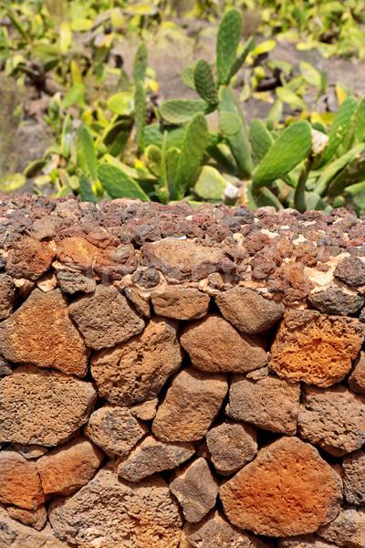 Lanzarote La Guatiza masonry with volcanic stones Stock photo © lunamarina