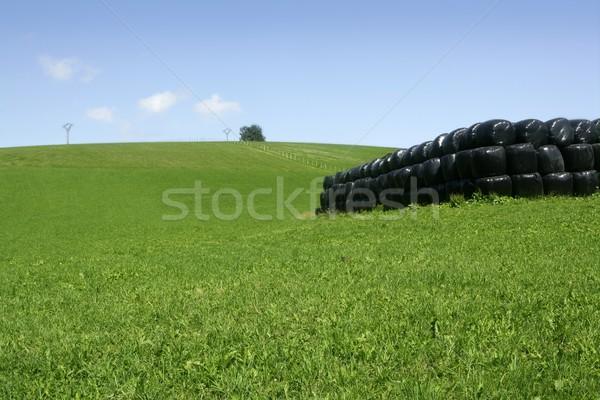 Black plastic wrap cover for cereal bales Stock photo © lunamarina