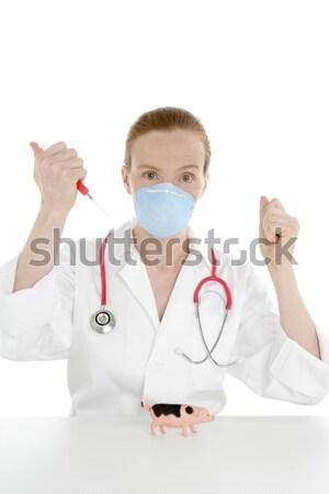 Médecin grippe vaccin seringue jouet porc Photo stock © lunamarina