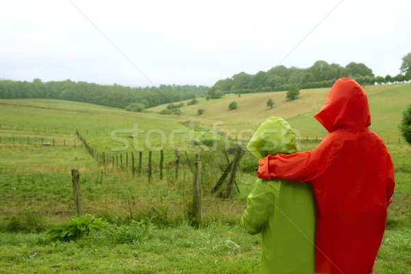 Green meadow with waterproof colorful coat Stock photo © lunamarina