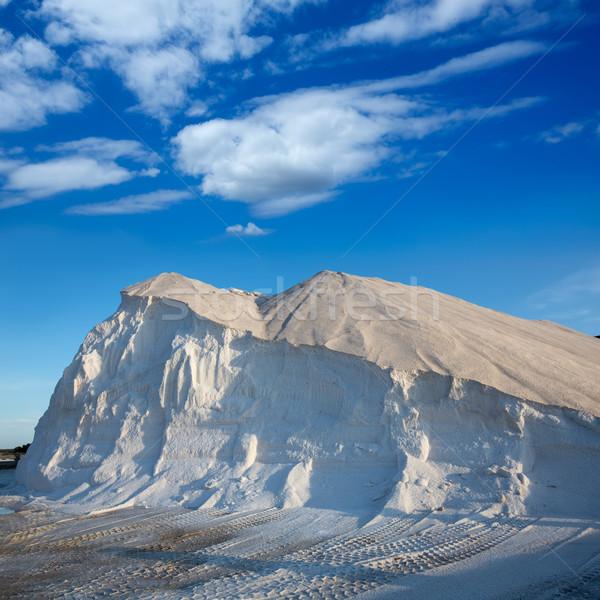 Ibiza ses Salines saltworks white salt mountain Stock photo © lunamarina