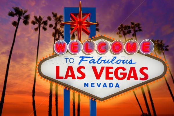 üdvözlet mesés Las Vegas felirat naplemente pálmafák Stock fotó © lunamarina