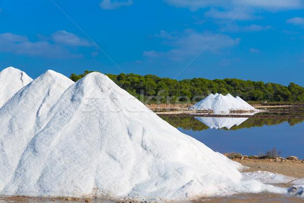 Mallorca Ses Salines Es Trenc Estrenc saltworks Stock photo © lunamarina