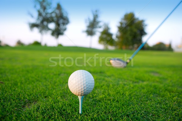 Golf balle club pilote herbe verte horizon Photo stock © lunamarina