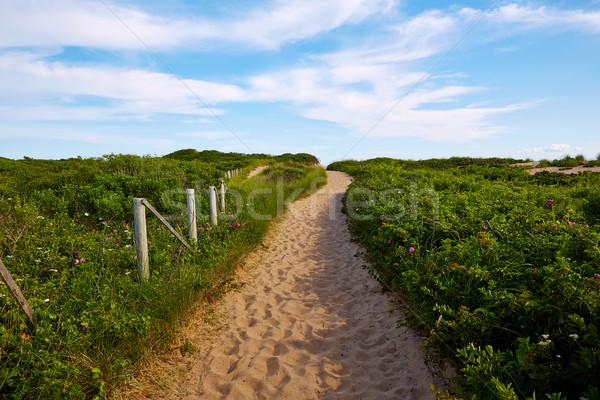 Cape Cod Herring Cove Beach Massachusetts US Stock photo © lunamarina
