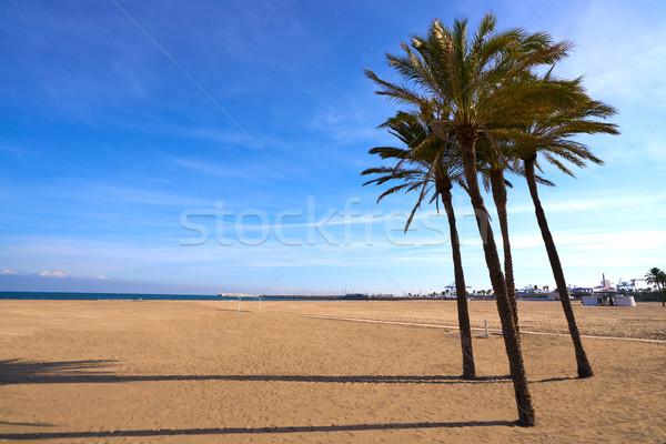 Валенсия пляж Испания пальмами воды Сток-фото © lunamarina
