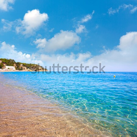 Alcudia in Mallorca la Victoria turquoise beach Stock photo © lunamarina