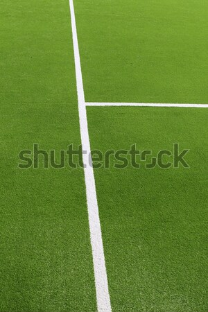 paddle tennis green grass camp field texture Stock photo © lunamarina