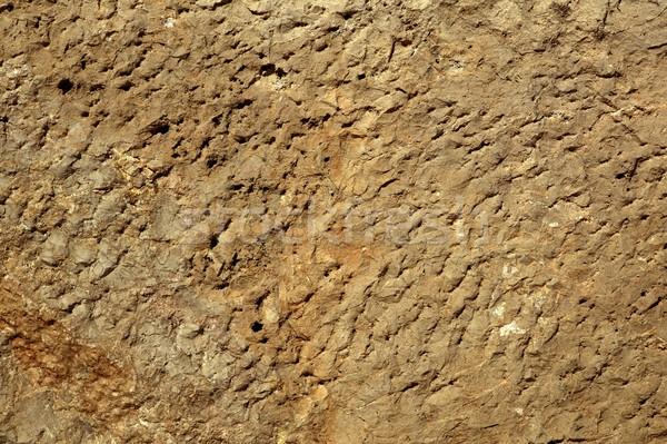 Textura calcário pedra superfície naturalismo abstrato Foto stock © lunamarina