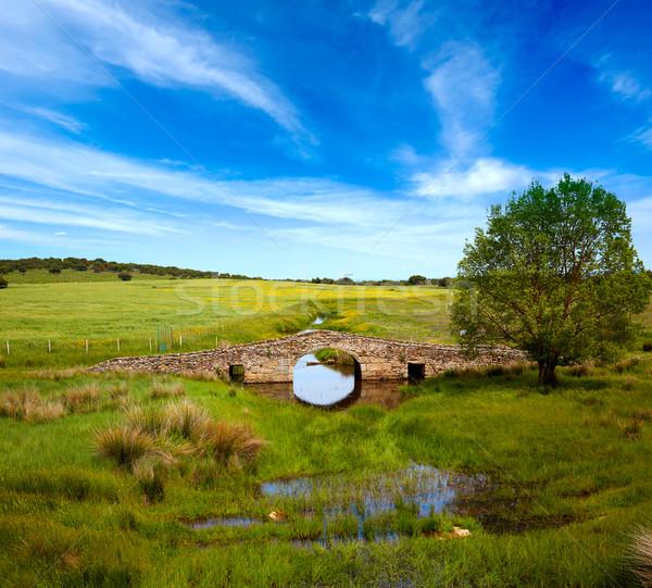 Bridge over Salor river in Via de la Plata way Stock photo © lunamarina