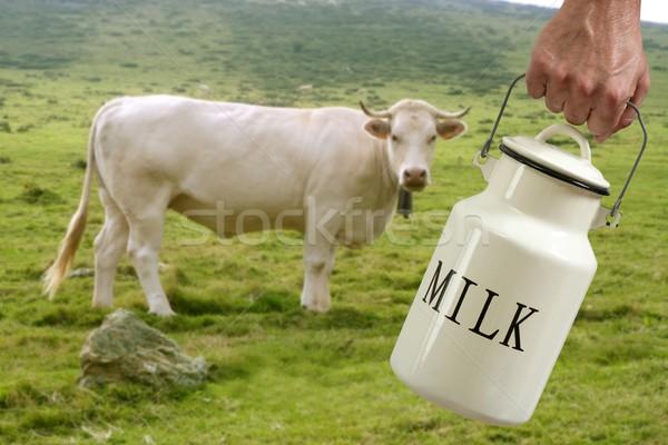 молоко банка фермер стороны корова луговой Сток-фото © lunamarina