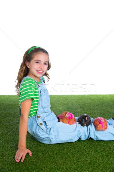 breeder hens kid girl rancher farmer with chicken chicks Stock photo © lunamarina