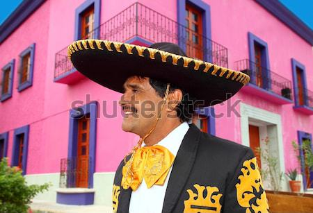 Blowing noisemaker suit party funny young man Stock photo © lunamarina