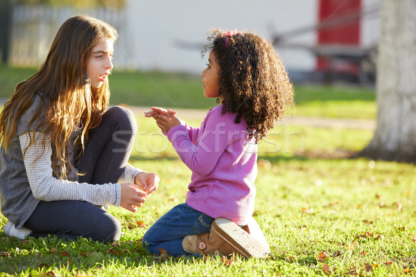 Kid girls playing in park grass mixed ethnicity  Stock photo © lunamarina
